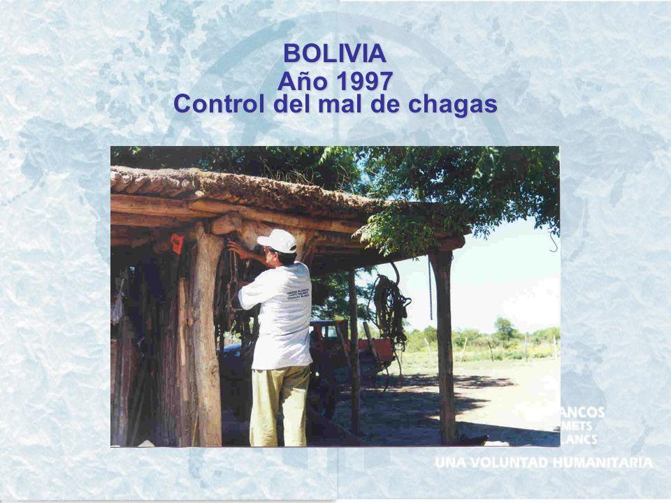 ARGENTINA Año 2002 Cascos Blancos – REDES – Ministerio de Salud