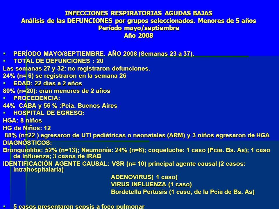 INFECCIONES RESPIRATORIAS AGUDAS BAJAS Análisis de las DEFUNCIONES por grupos seleccionados.