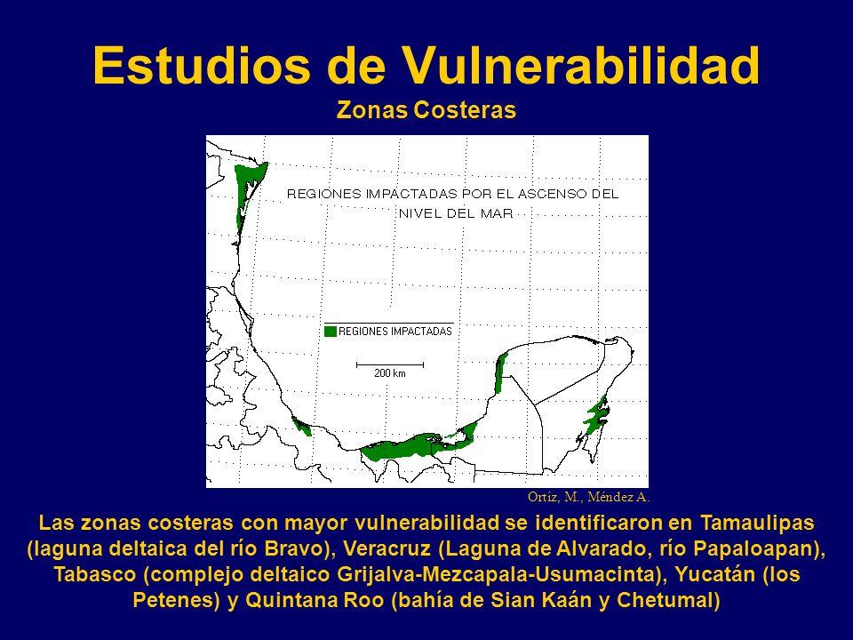 Estudios de Vulnerabilidad Zonas Costeras Las zonas costeras con mayor vulnerabilidad se identificaron en Tamaulipas (laguna deltaica del río Bravo), Veracruz (Laguna de Alvarado, río Papaloapan), Tabasco (complejo deltaico Grijalva-Mezcapala-Usumacinta), Yucatán (los Petenes) y Quintana Roo (bahía de Sian Kaán y Chetumal) Ortíz, M., Méndez A.