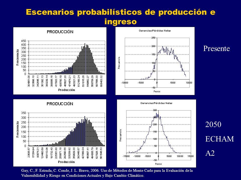 Escenarios probabilísticos de producción e ingreso Presente 2050 ECHAM A2 Gay, C., F.