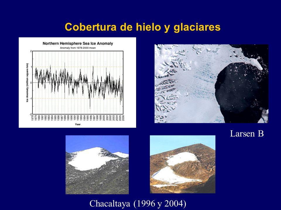 Impactos Potenciales de Cambio Climático en México Bosques (2050) La cobertura vegetal del país se vería afectada hasta en un 50% en condiciones de cambio climático.