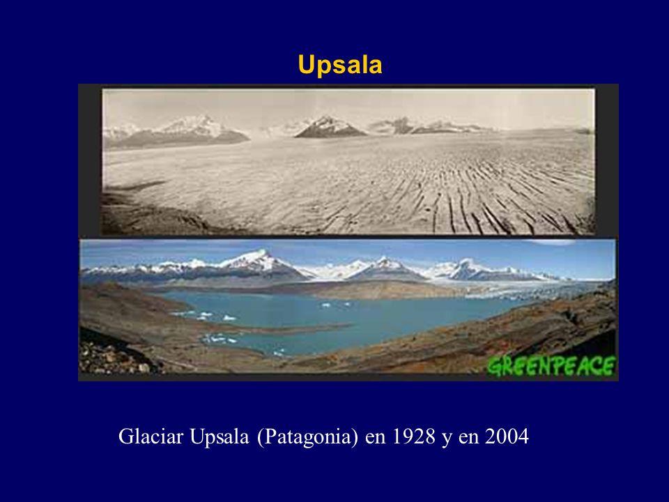 Glaciar Upsala (Patagonia) en 1928 y en 2004 Upsala
