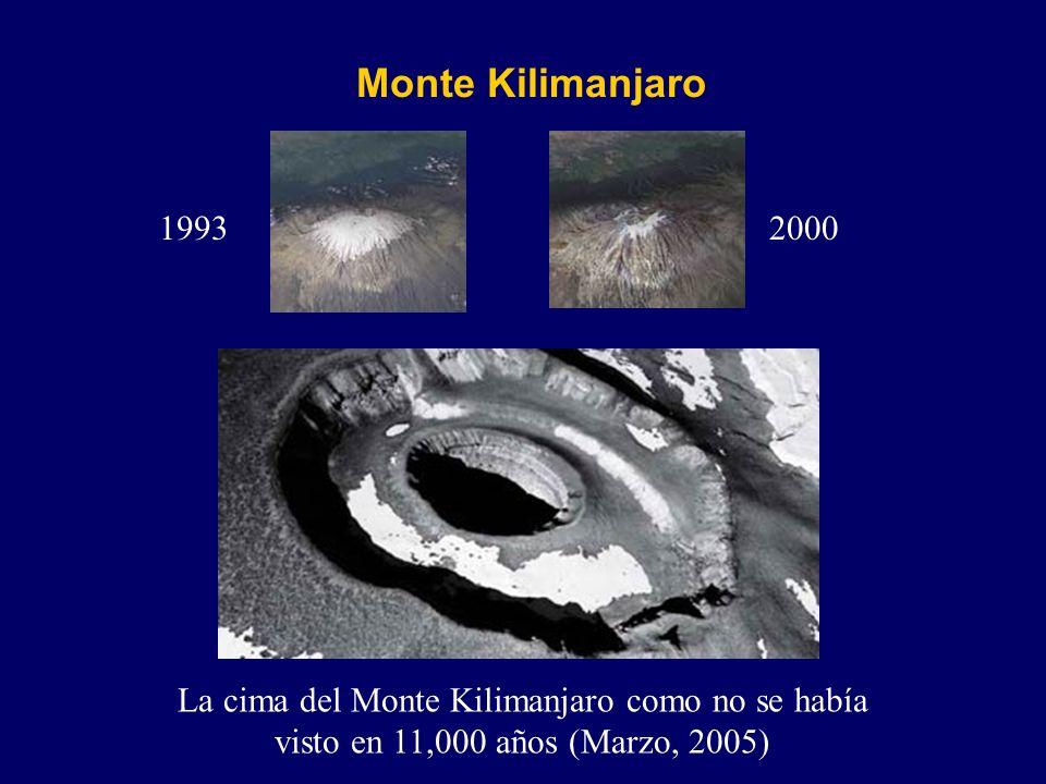 La cima del Monte Kilimanjaro como no se había visto en 11,000 años (Marzo, 2005) Monte Kilimanjaro 19932000