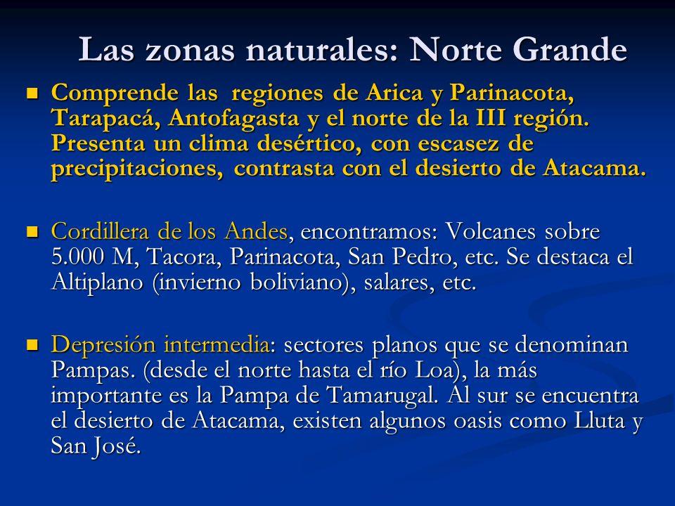 Las zonas naturales: Norte Grande Comprende las regiones de Arica y Parinacota, Tarapacá, Antofagasta y el norte de la III región. Presenta un clima d