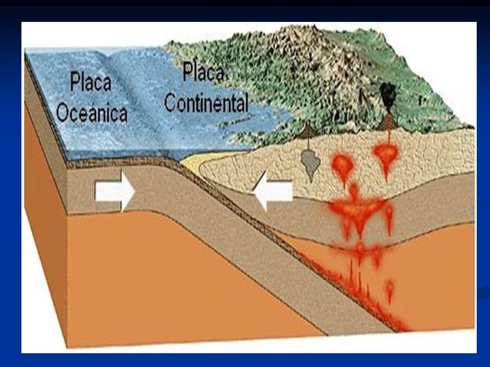 La Zona Sur La Cordillera de la Costa: se levanta en la región del Biobío y es conocida como la cordillera de Nahuelbuta.