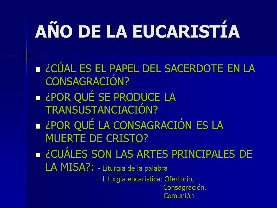 AÑO DE LA EUCARISTÍA ¿CÚAL ES EL PAPEL DEL SACERDOTE EN LA CONSAGRACIÓN.