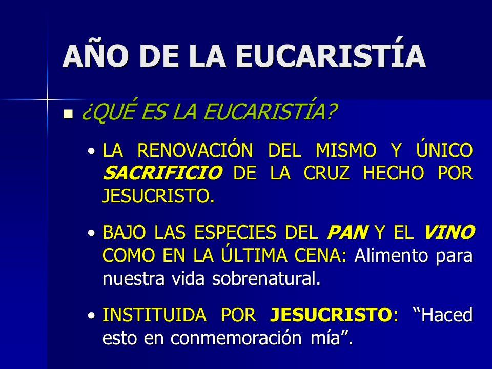 AÑO DE LA EUCARISTÍA ¿POR QUÉ MUERE CRISTO E LA MISA POR TI.