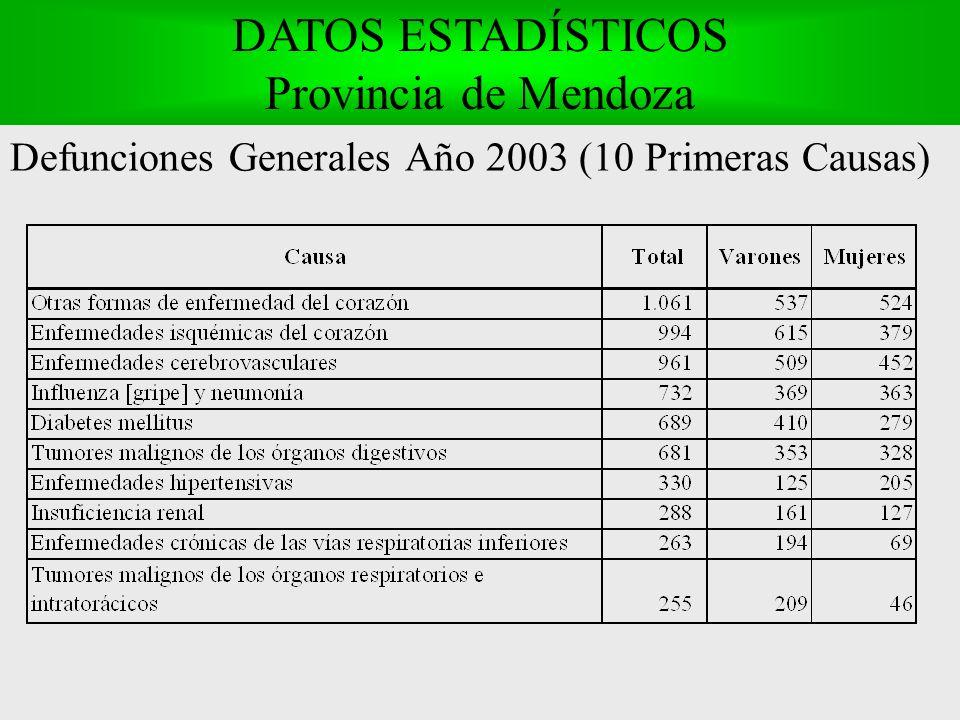 Defunciones Generales Año 2003 (10 Primeras Causas) DATOS ESTADÍSTICOS Provincia de Mendoza