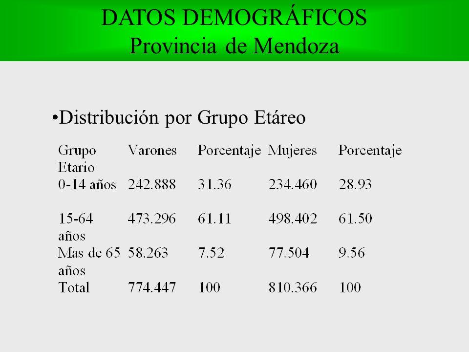 Distribución por Grupo Etáreo DATOS DEMOGRÁFICOS Provincia de Mendoza