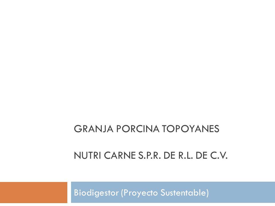 GRANJA PORCINA TOPOYANES NUTRI CARNE S.P.R. DE R.L. DE C.V. Biodigestor (Proyecto Sustentable)