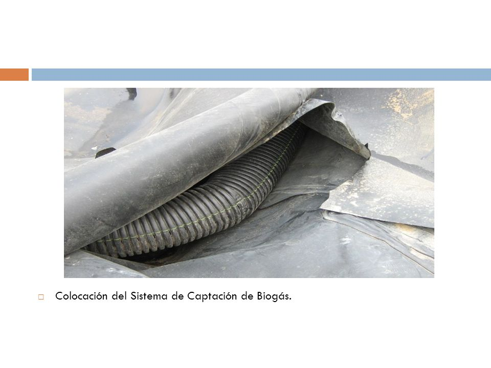 Colocación del Sistema de Captación de Biogás.