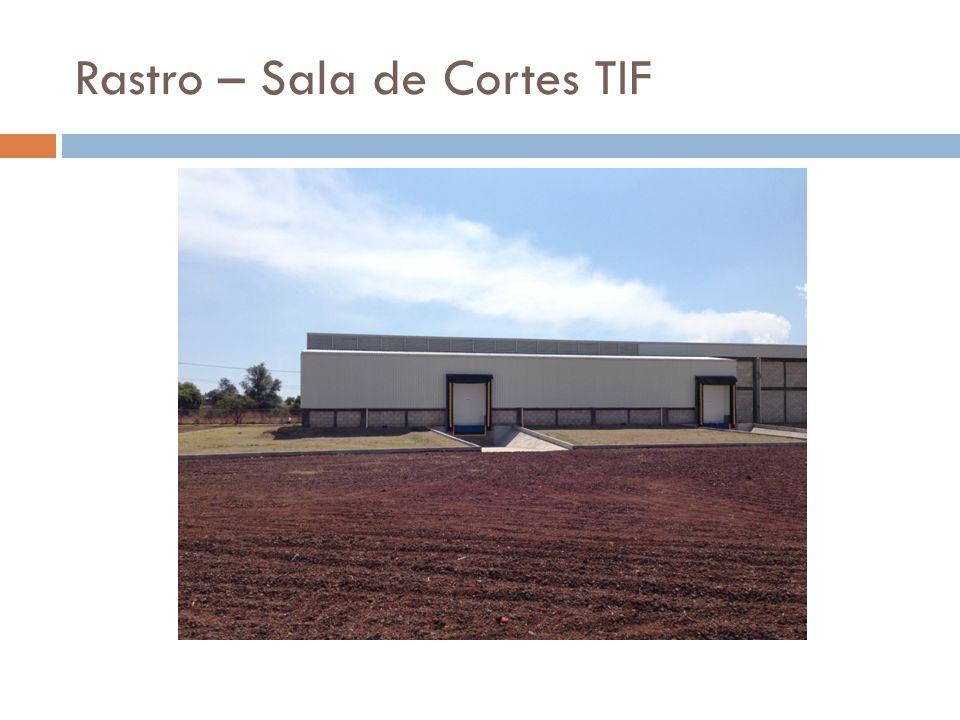 Rastro – Sala de Cortes TIF