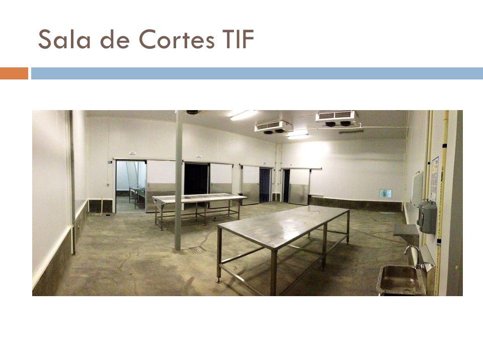 Sala de Cortes TIF