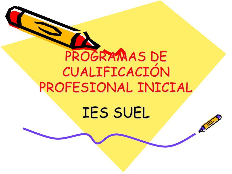 PROGRAMAS DE CUALIFICACIÓN PROFESIONAL INICIAL IES SUEL