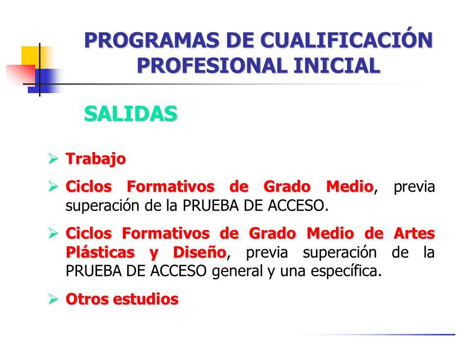 SALIDAS Trabajo Trabajo Ciclos Formativos de Grado Medio Ciclos Formativos de Grado Medio, previa superación de la PRUEBA DE ACCESO.
