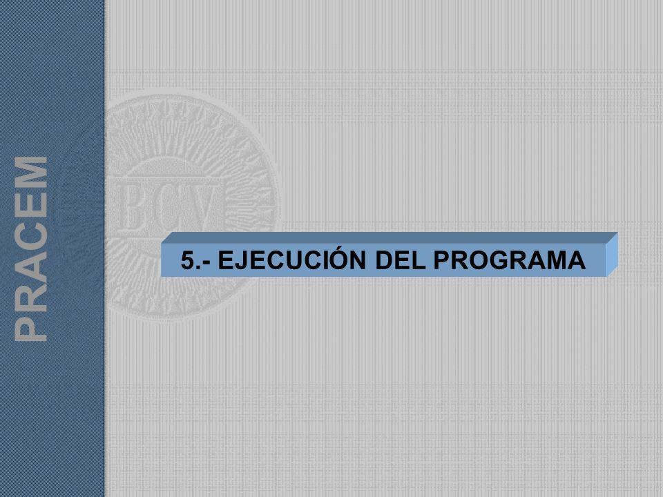 5.- EJECUCIÓN DEL PROGRAMA PRACEM