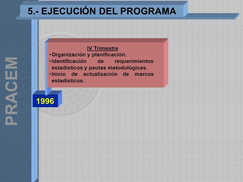 1996 5.- EJECUCIÓN DEL PROGRAMA PRACEM IV Trimestre Organización y planificación. Identificación de requerimientos estadísticos y pautas metodológicas