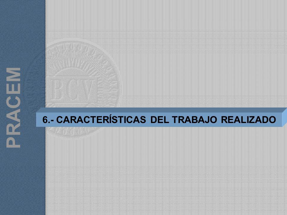 6.- CARACTERÍSTICAS DEL TRABAJO REALIZADO PRACEM