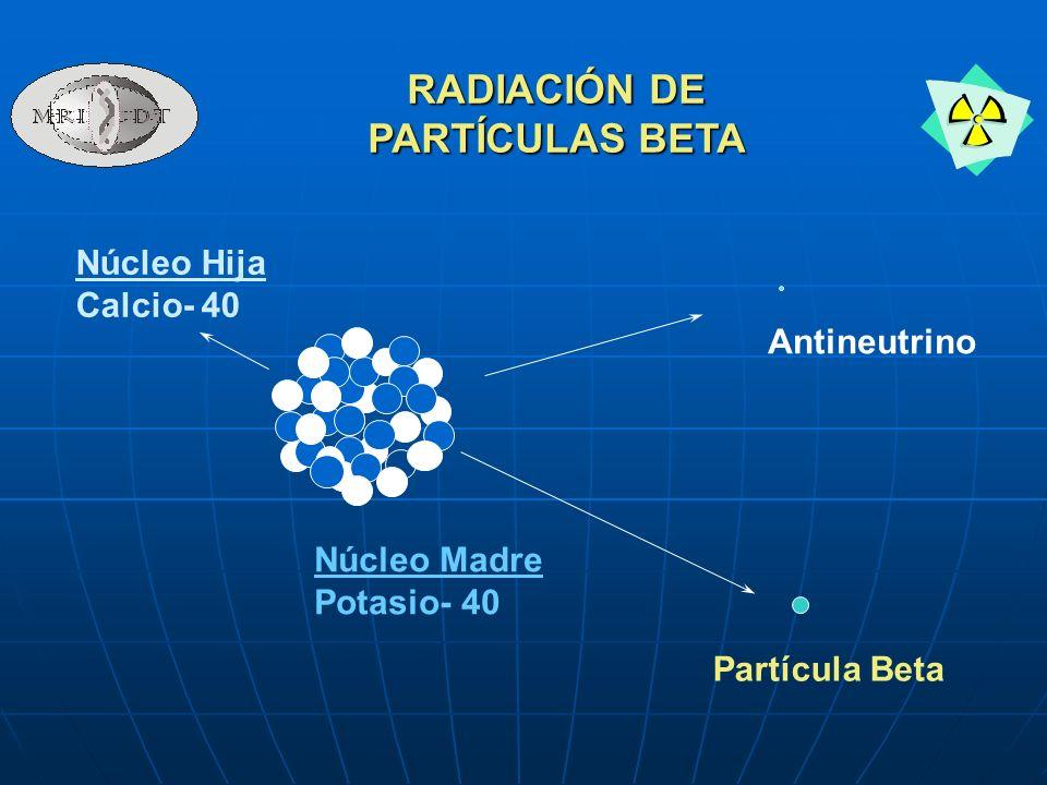 Núcleo Madre Potasio- 40 Núcleo Hija Calcio- 40 Partícula Beta Antineutrino RADIACIÓN DE PARTÍCULAS BETA