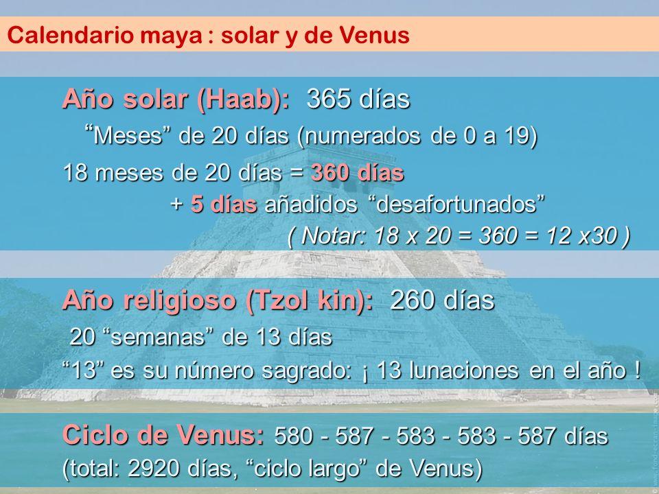 Calendario maya : solar y de Venus Año solar (Haab): 365 días Meses de 20 días (numerados de 0 a 19) Año religioso (Tzol kin): 260 días 20 semanas de