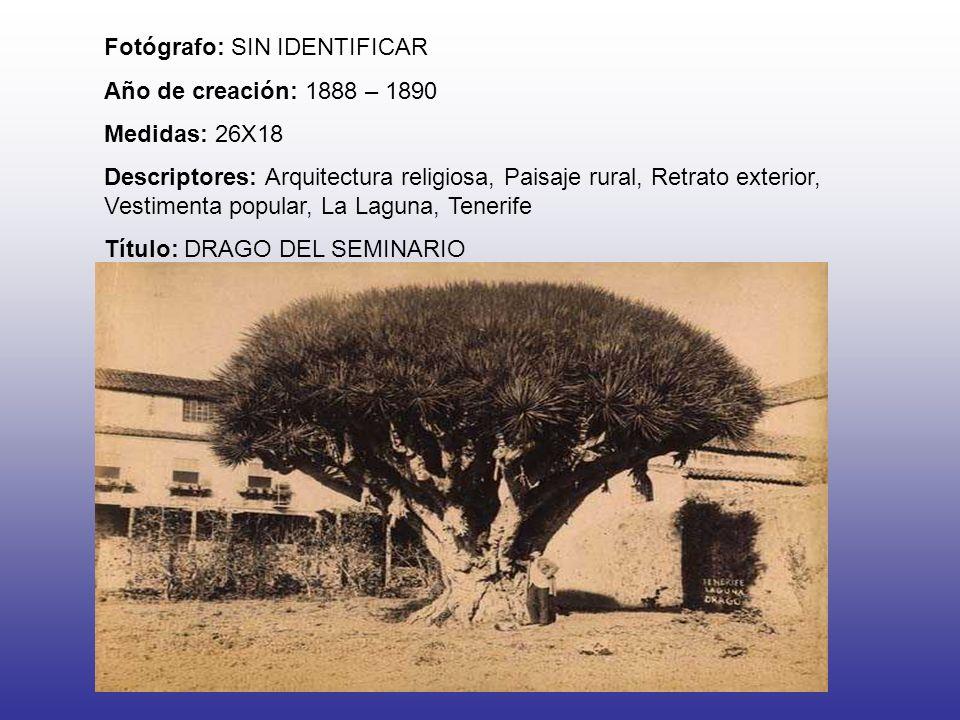 Fotógrafo: SIN IDENTIFICAR Año de creación: 1888 – 1890 Medidas: 26X18 Descriptores: Arquitectura religiosa, Paisaje rural, Retrato exterior, Vestimenta popular, La Laguna, Tenerife Título: DRAGO DEL SEMINARIO