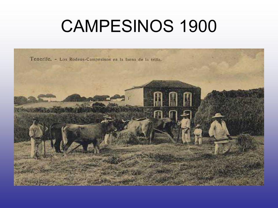 CAMPESINOS 1900