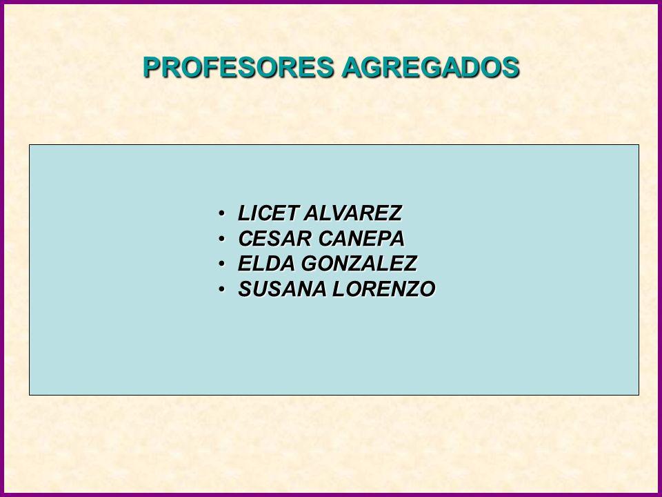 PROFESORES AGREGADOS LICET ALVAREZ LICET ALVAREZ CESAR CANEPA CESAR CANEPA ELDA GONZALEZ ELDA GONZALEZ SUSANA LORENZO SUSANA LORENZO