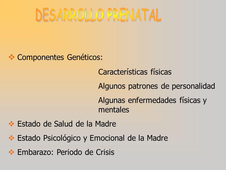 Componentes Genéticos: Características físicas Algunos patrones de personalidad Algunas enfermedades físicas y mentales Estado de Salud de la Madre Estado Psicológico y Emocional de la Madre Embarazo: Periodo de Crisis