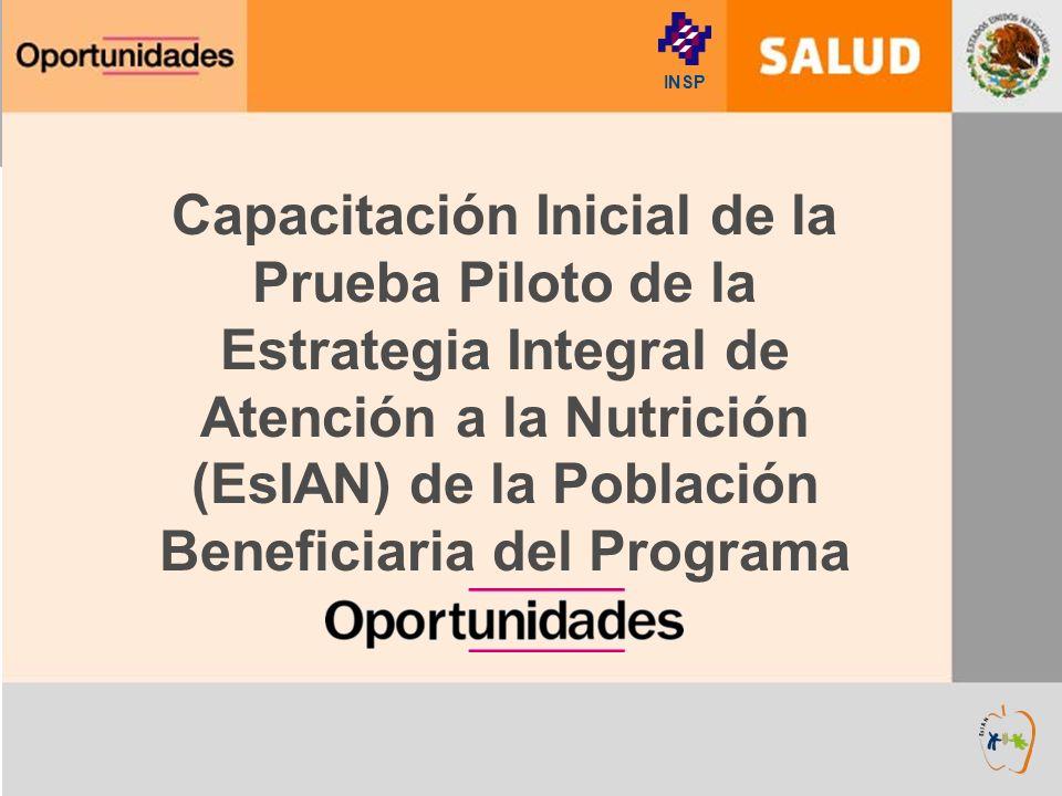 Capacitación Inicial de la Prueba Piloto de la Estrategia Integral de Atención a la Nutrición (EsIAN) de la Población Beneficiaria del Programa INSP