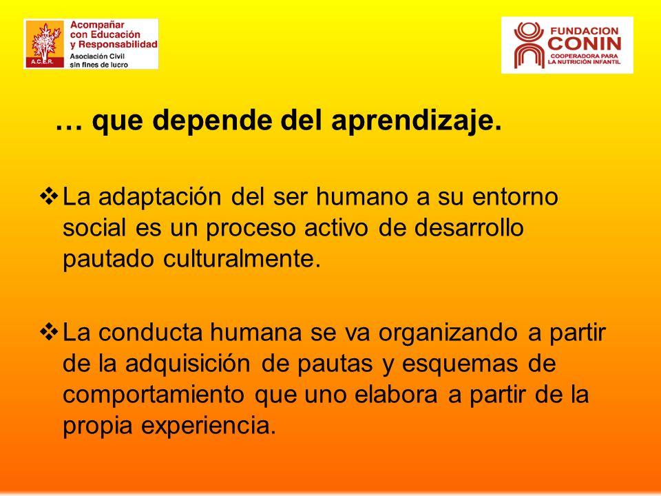 … que depende del aprendizaje. La adaptación del ser humano a su entorno social es un proceso activo de desarrollo pautado culturalmente. La conducta