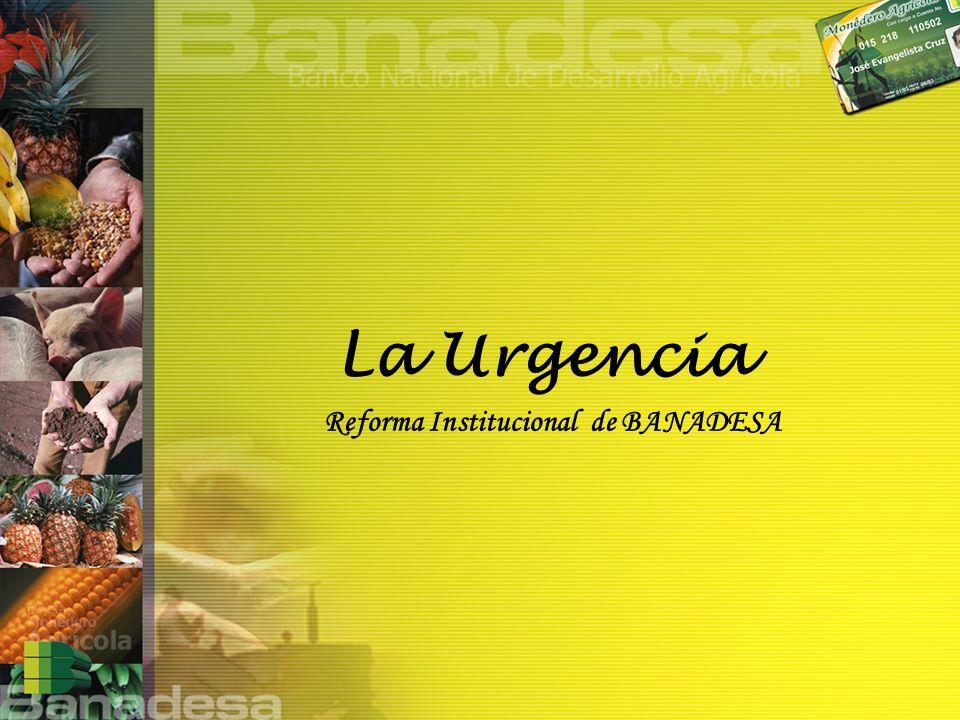 La Urgencia Reforma Institucional de BANADESA