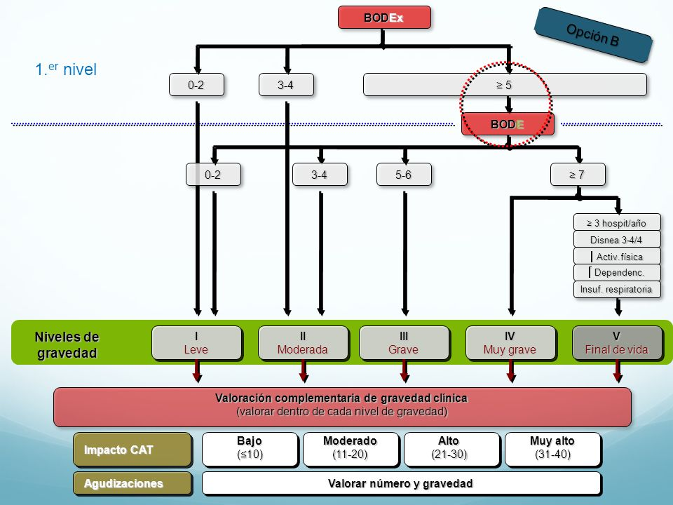 BODEx 0-23-4 5 BODE 1. er nivel ILeve Niveles de gravedad IIModeradaIIIGraveIV Muy grave V Final de vida 3 hospit/año 3 hospit/año Disnea 3-4/4 Activ.