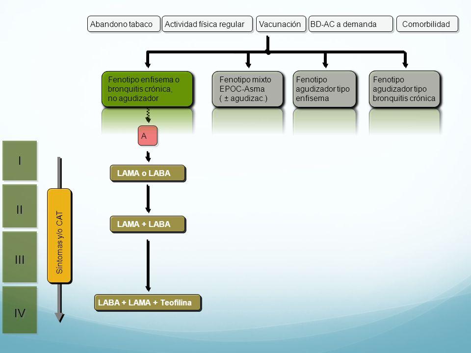 II III IV I I Síntomas y/o CAT Actividad física regularVacunaciónBD-AC a demandaAbandono tabacoComorbilidad Fenotipo mixto EPOC-Asma ( ± agudizac.) Fe