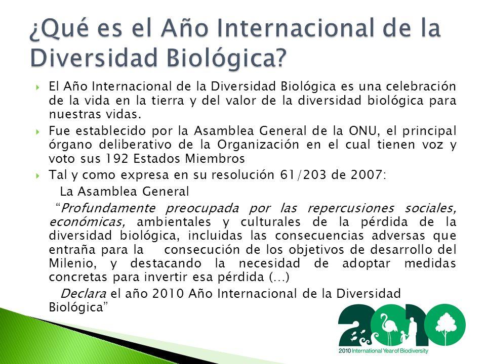 El Año Internacional de la Diversidad Biológica es una celebración de la vida en la tierra y del valor de la diversidad biológica para nuestras vidas.