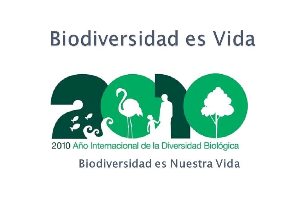 Biodiversidad es Vida Biodiversidad es Nuestra Vida