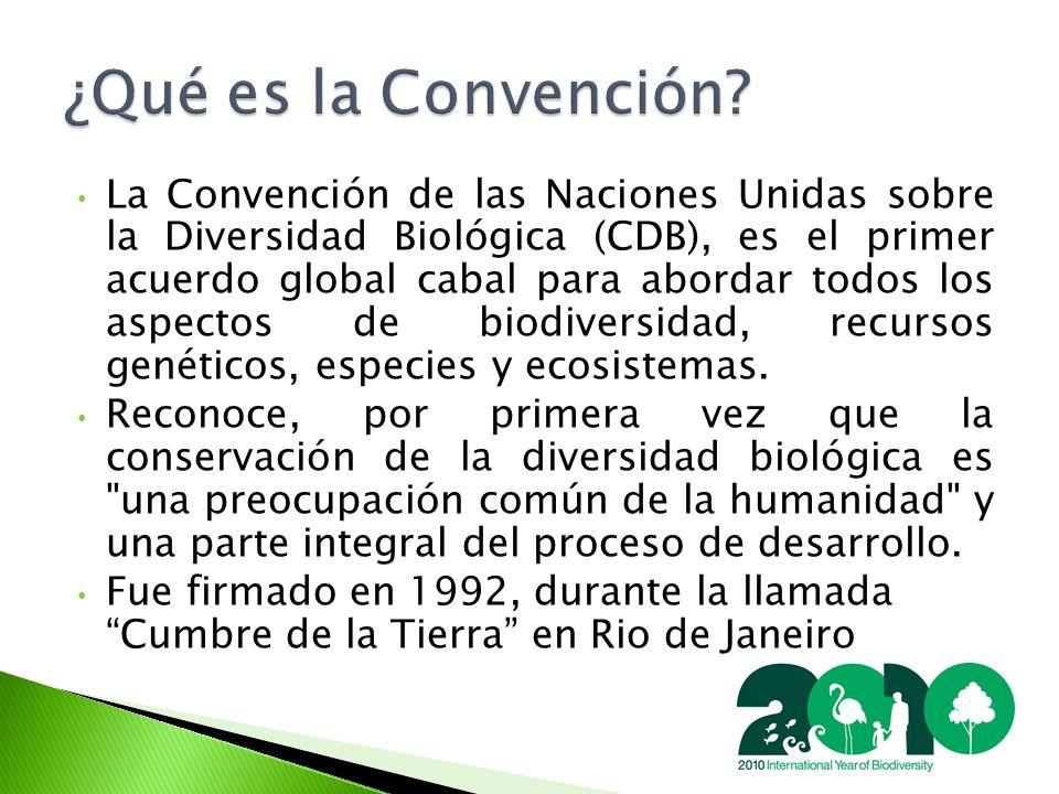 La Convención de las Naciones Unidas sobre la Diversidad Biológica (CDB), es el primer acuerdo global cabal para abordar todos los aspectos de biodiversidad, recursos genéticos, especies y ecosistemas.