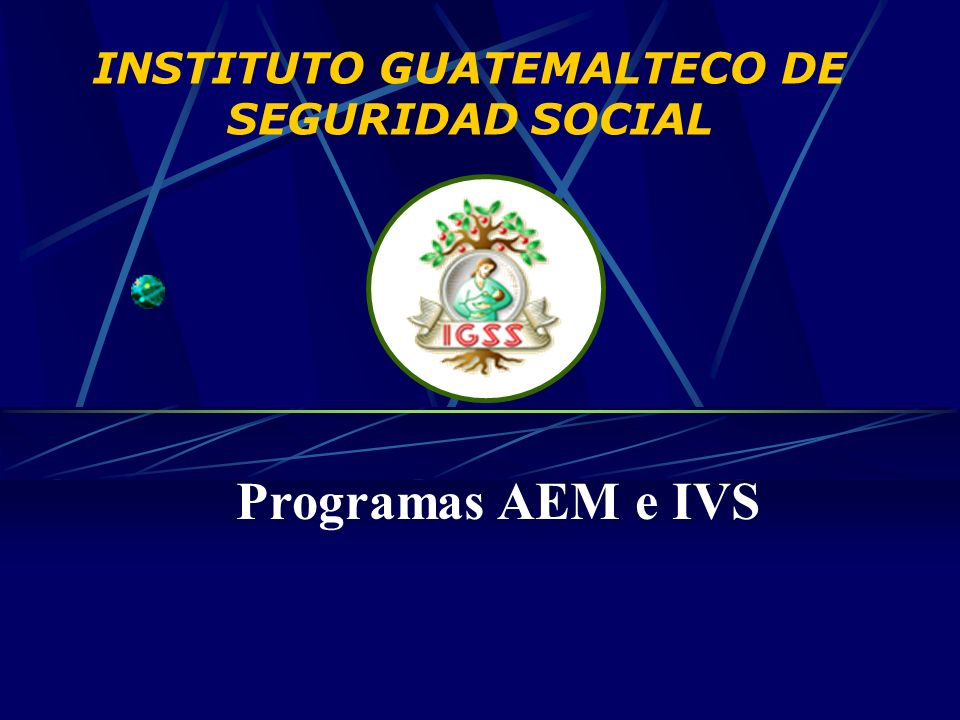 INSTITUTO GUATEMALTECO DE SEGURIDAD SOCIAL Programas AEM e IVS
