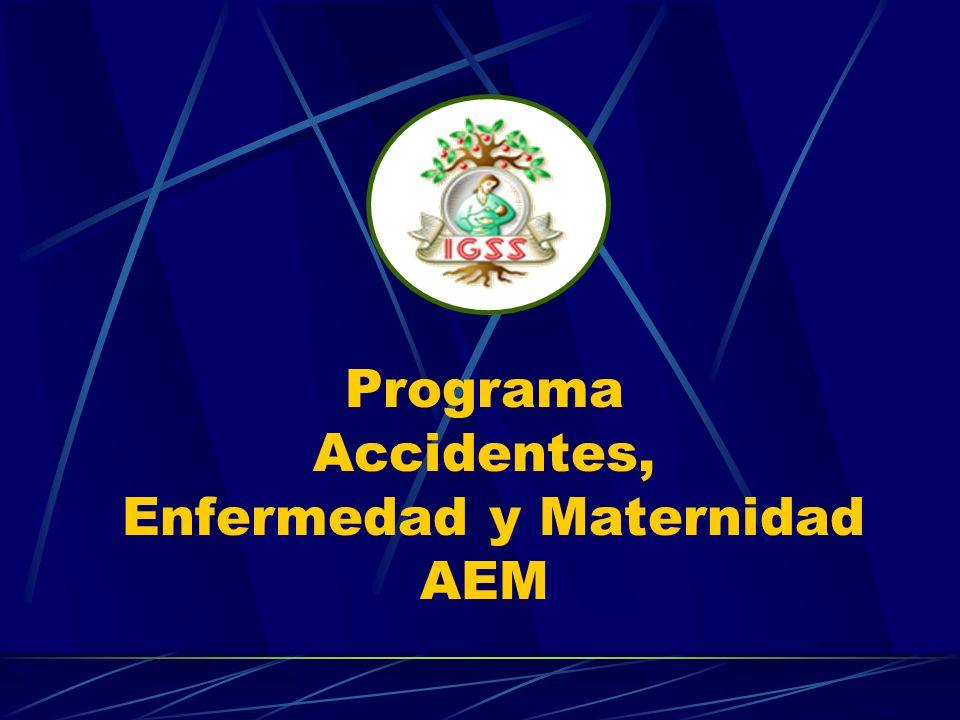 Programa Accidentes, Enfermedad y Maternidad AEM