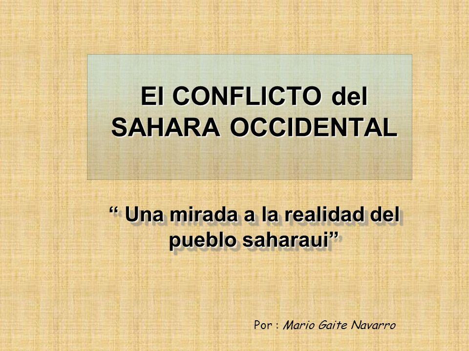 Paz y Referéndum : El Consejo de Seguridad de las Naciones Unidas creó un plan de paz en 1991, así como una Comisión especial para el Referéndum en Sáhara Occidental.
