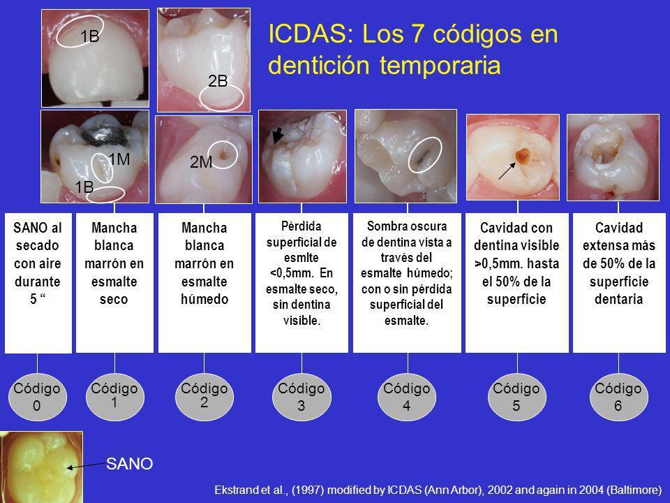 Código 6 Cavidad extensa más de 50% de la superficie dentaria Código 5 Cavidad con dentina visible >0,5mm. hasta el 50% de la superficie Código 4 Somb
