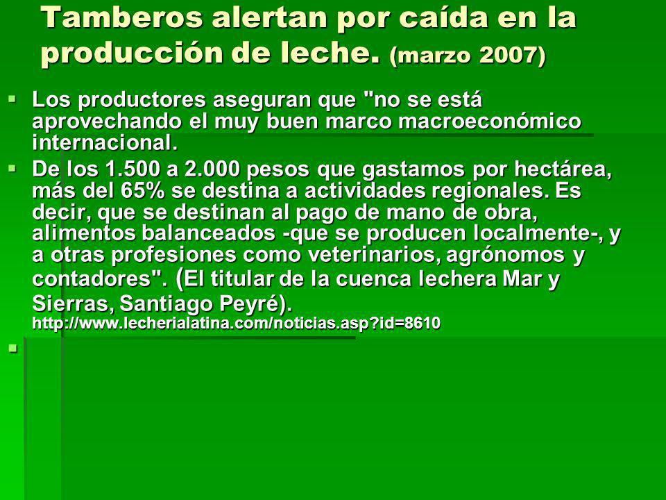 Tamberos alertan por caída en la producción de leche. (marzo 2007) Los productores aseguran que