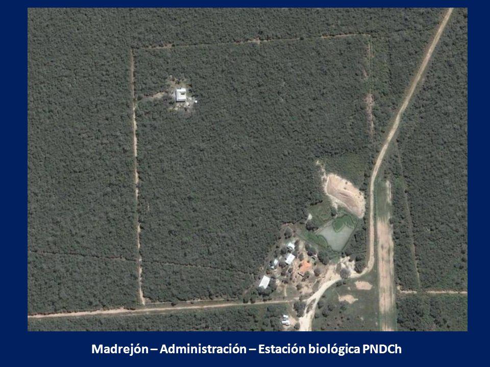 Madrejón – Administración – Estación biológica PNDCh