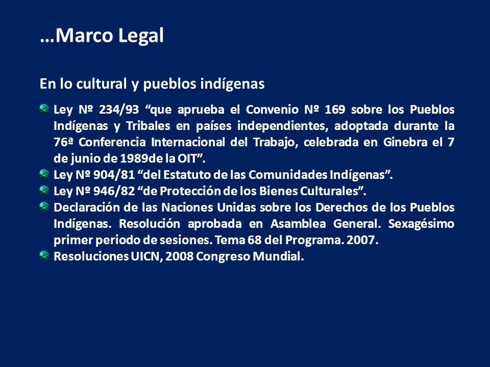 En lo cultural y pueblos indígenas Ley Nº 234/93 que aprueba el Convenio Nº 169 sobre los Pueblos Indígenas y Tribales en países independientes, adopt