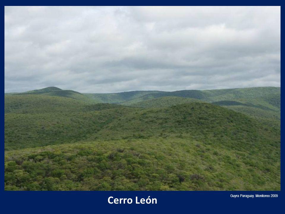Cerro León Guyra Paraguay. Monitoreo 2009