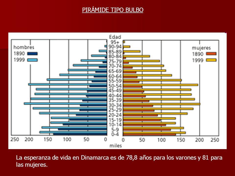 La esperanza de vida en Dinamarca es de 78,8 años para los varones y 81 para las mujeres. PIRÁMIDE TIPO BULBO