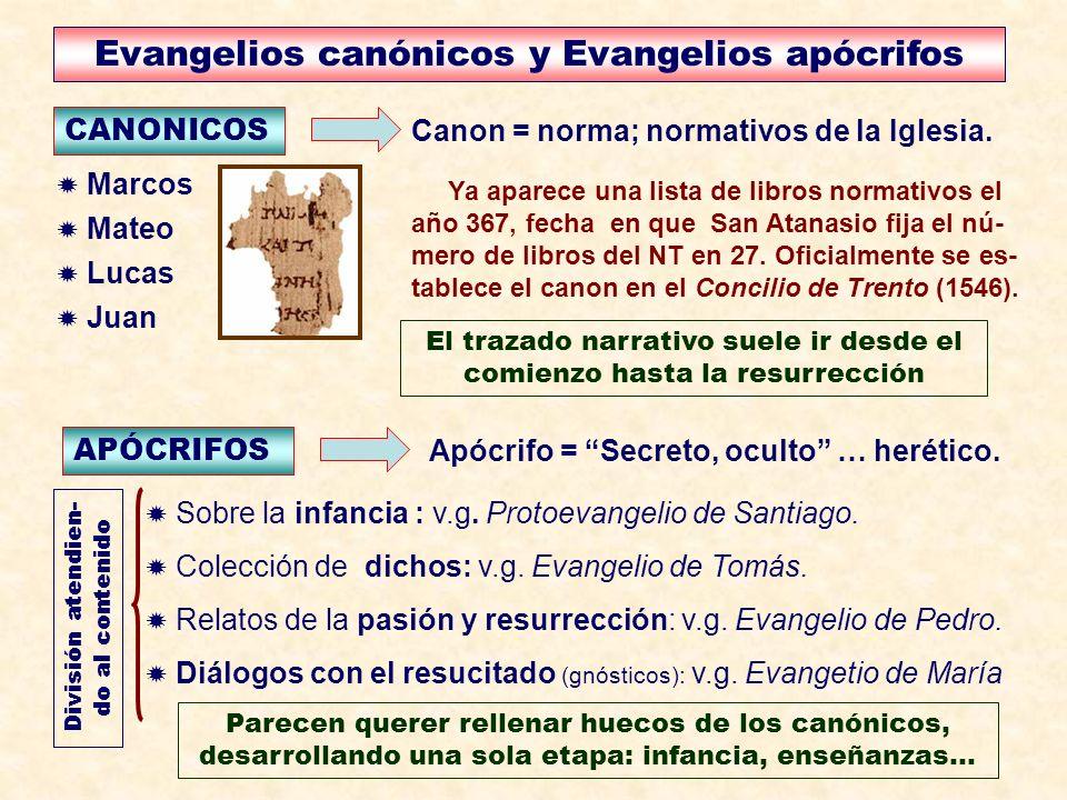 Evangelios canónicos y Evangelios apócrifos CANONICOS Canon = norma; normativos de la Iglesia. Sobre la infancia : v.g. Protoevangelio de Santiago. Co