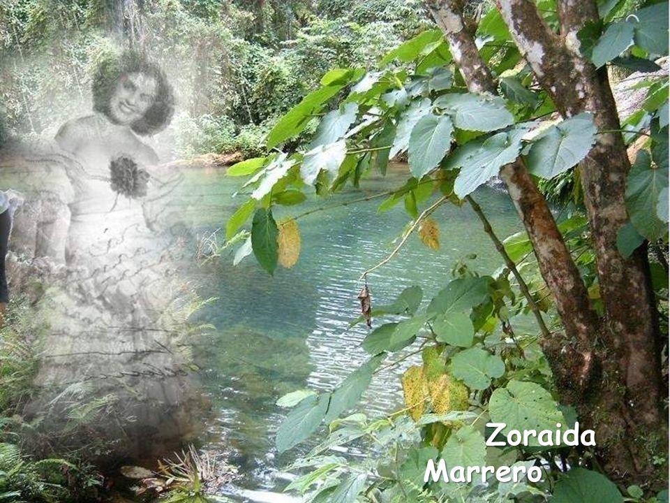 Zoraida Marrero Zoraida Marrero