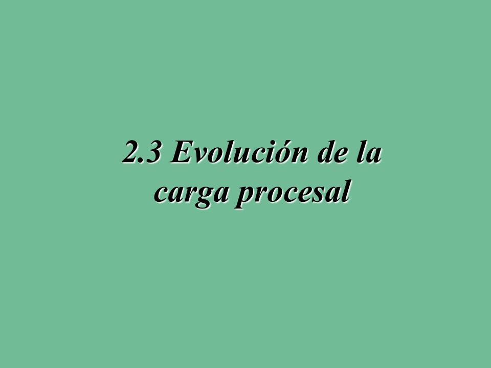 2.3 Evolución de la carga procesal