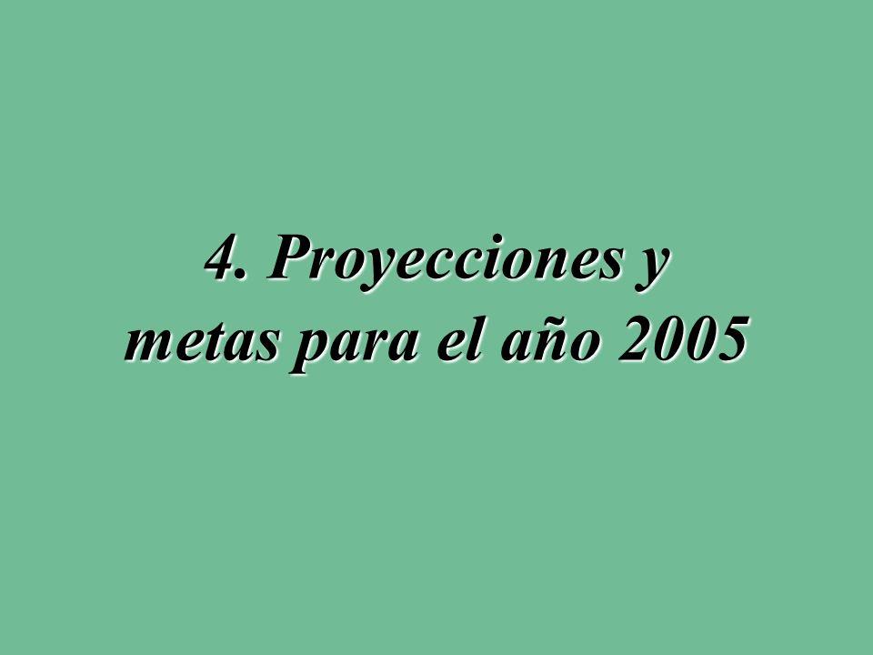 4. Proyecciones y metas para el año 2005