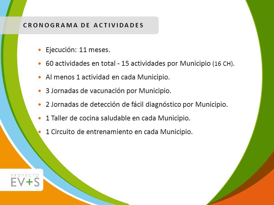 CRONOGRAMA DE ACTIVIDADES Ejecución: 11 meses. 60 actividades en total - 15 actividades por Municipio (16 CH). Al menos 1 actividad en cada Municipio.